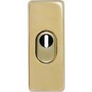 Tür Außenrosette TSS550 Messing-Optik